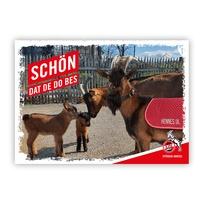 """Postkarte """"Schön, dat de do bes"""" (1)"""