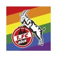 Aufkleber Logo Diversity (1)