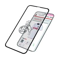 Panzerglas iPhone X/Xs (1)