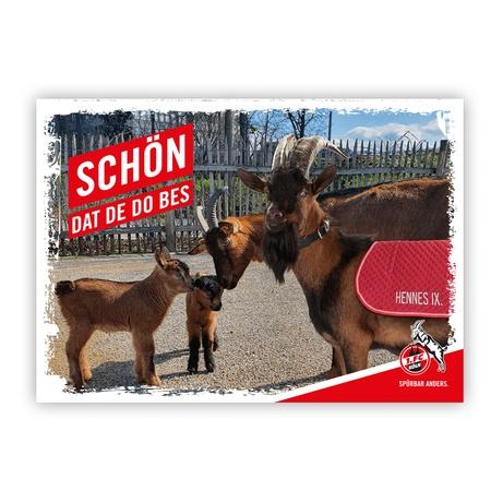 """Postkarte """"Schön, dat de do bes"""""""