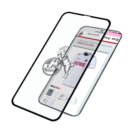 Panzerglas iPhone X/Xs