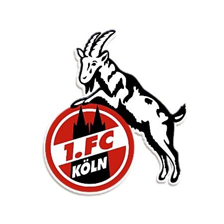 Aufkleber Logo groß (25cm)