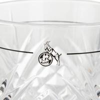 Gin Glas 2er Set (2)