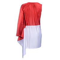 Flaggenkleid (5)