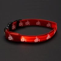 LED Hundehalsband (3)